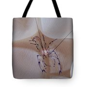 Shrimp In Bubble Coral, Indonesia Tote Bag