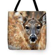Shy Doe Tote Bag