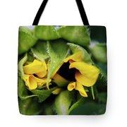 Shy Tote Bag