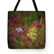 Siberian Dogwood Tote Bag