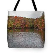 Sibley Pond Tote Bag