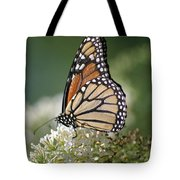 Side Profile Of A Monarch Tote Bag