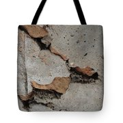 Sideways Glance Tote Bag