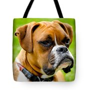 Sidney The Boxer Tote Bag