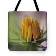 Significance Tote Bag