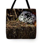 Sign's Of Fall Tote Bag