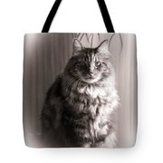 Silent Moment Tote Bag