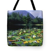 Silent Valley, Mourne Mountains Tote Bag