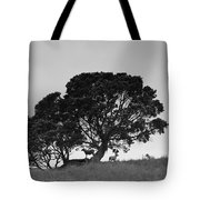 Silhouette Of A Tree With Sheep Tote Bag