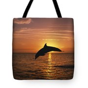 Silhouette Of Leaping Bottlenose Tote Bag