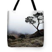 Silhouette Of Tree In Mist Tote Bag