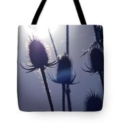 Silhouette Of Weeds Tote Bag