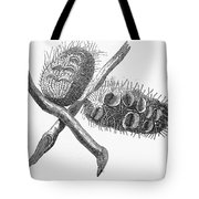Silver Banksia Seeds Tote Bag
