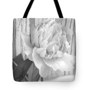 Silver Beauty Tote Bag