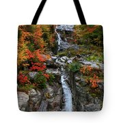 Silver Cascades Surrounded By Colors Tote Bag
