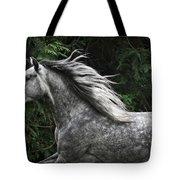 Silver Dapple Tote Bag