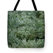 Silver Mound Dew Drenched Tote Bag