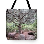 Silver On Trunk Tote Bag