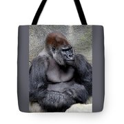 Silverback Smile Tote Bag