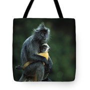 Silvered Leaf Monkey And Baby Tote Bag