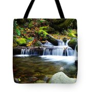 Simple Pools  Tote Bag