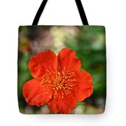 Simple Red Tote Bag