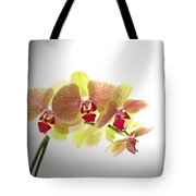Simplified Orchids II Tote Bag