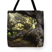Simply Old Oak  Tote Bag