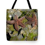 Simply Starfish Tote Bag