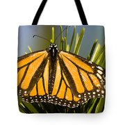 Single Monarch Butterfly Tote Bag