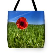 Single Poppy Flower  In A Field Of Wheat Tote Bag