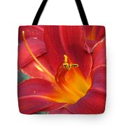 Single Red Lily 2 Tote Bag