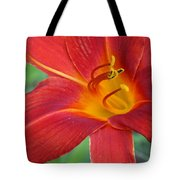 Single Red Lily Closeup Tote Bag