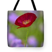 Single Red Poppy  Tote Bag
