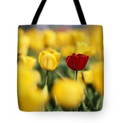 Single Red Tulip Among Yellow Tulips Tote Bag