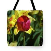 Single Red Tulip Tote Bag