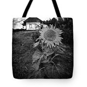 Sips Of Soil  Tote Bag