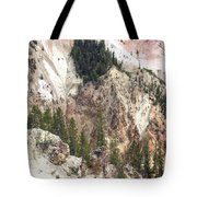 Sit For A Spell At Grand Canyon In Yellowstone Tote Bag