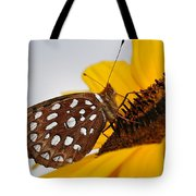 Sitting Sunny Tote Bag