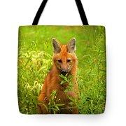 Sitting Wolf Tote Bag