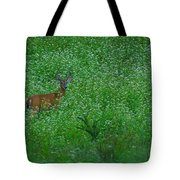 Six Point Deer In Wildflowers Tote Bag
