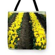 Skagit Valley Tulips 2 Tote Bag