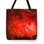 Sky Fire Tote Bag by Debra and Dave Vanderlaan