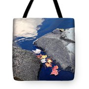 Sky Reflection Leaves And Rocks Tote Bag