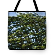 Slanted Branches Tote Bag