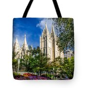 Slc Nw View Tote Bag by La Rae  Roberts