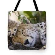 Sleeping Cheetah And Cub Kenya Tote Bag