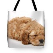 Sleeping Cockerpoo Puppy Tote Bag