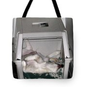 Sleeping In The Dog House Tote Bag
