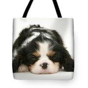 Sleeping Puppy Tote Bag by Jane Burton
